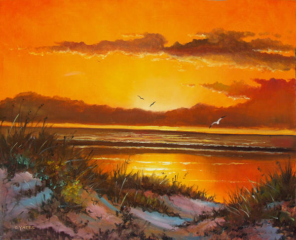 Florida Poster featuring the painting Siesta Sunset by Charles Yates