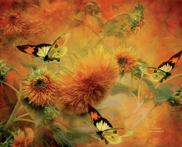 Sunflower Poster featuring the mixed media Sunflowers by Carol Cavalaris