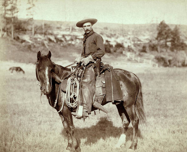 1800s Poster featuring the photograph Wild West. The Cow Boy. Sturgis, Dakota by Everett