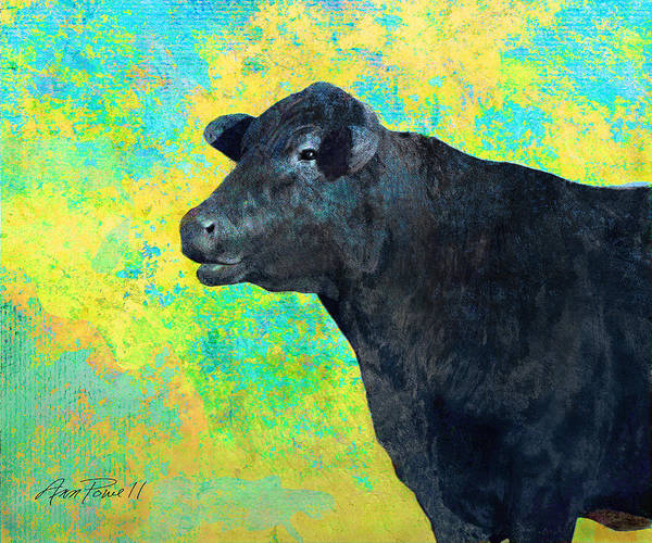 Cow Poster featuring the digital art Animals Cow Black Angus by Ann Powell