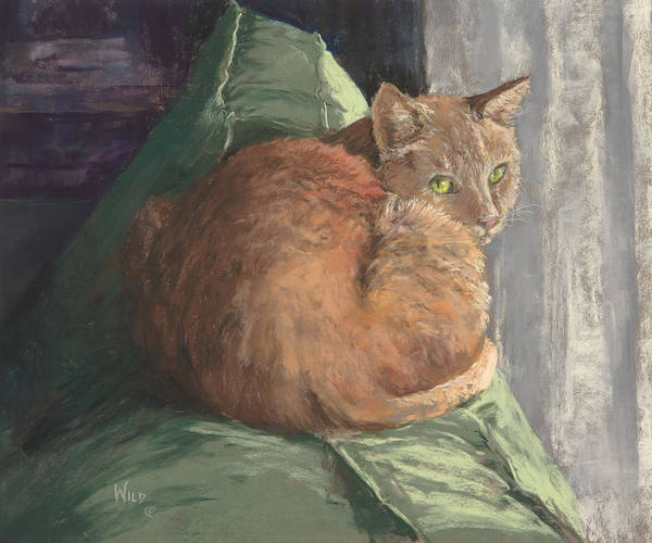 Cat Poster featuring the painting Sun Seeker I by Paula Wild