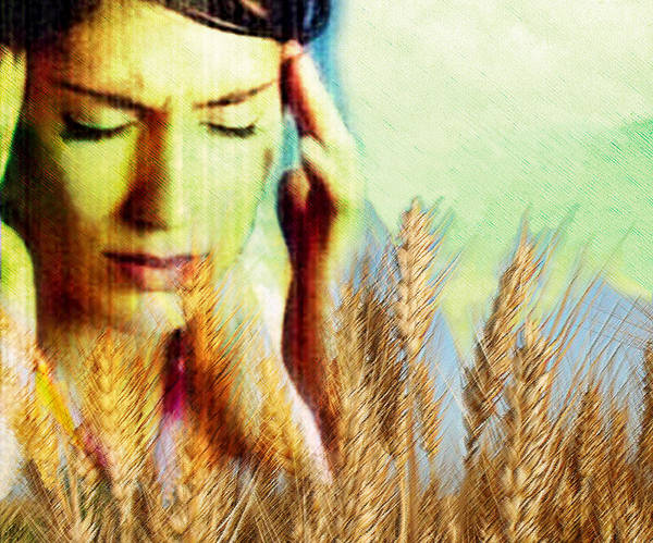 Wheat Poster featuring the photograph Wheat Allergy by Hannah Gal