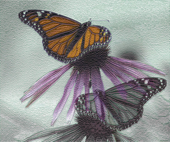 Butterflies Poster featuring the digital art Butterflies Under Glass by Evelyn Patrick