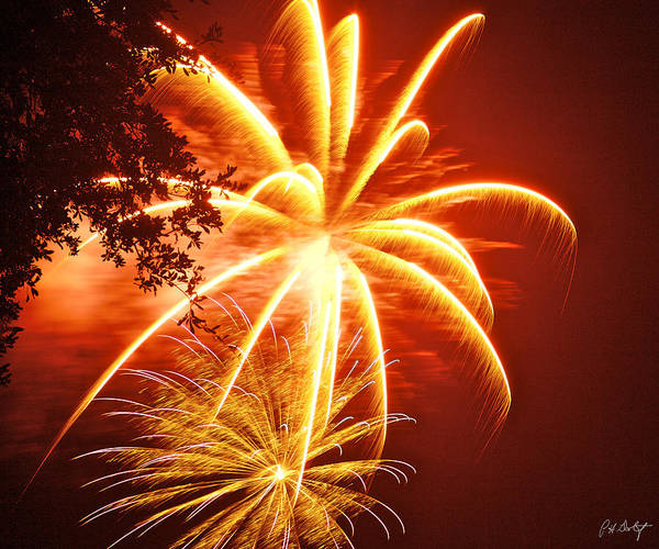 July 4th Poster featuring the photograph Fire In The Trees by Phill Doherty