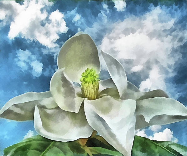 Magnolia Poster featuring the digital art Magnolia Dreams by Wendy J St Christopher