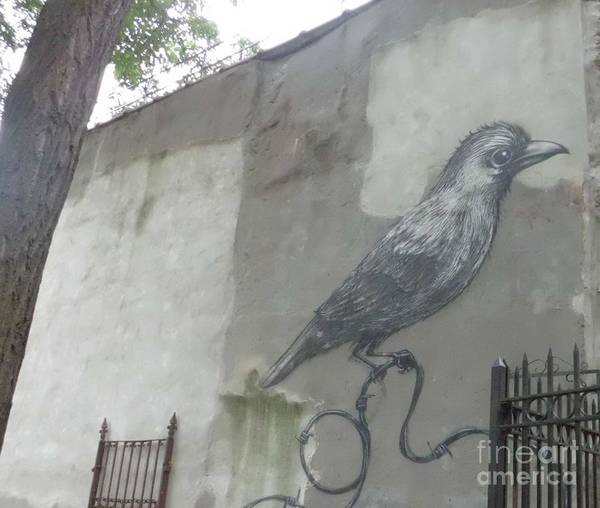 Mural Poster featuring the photograph Bird On A Wire by James Dolan
