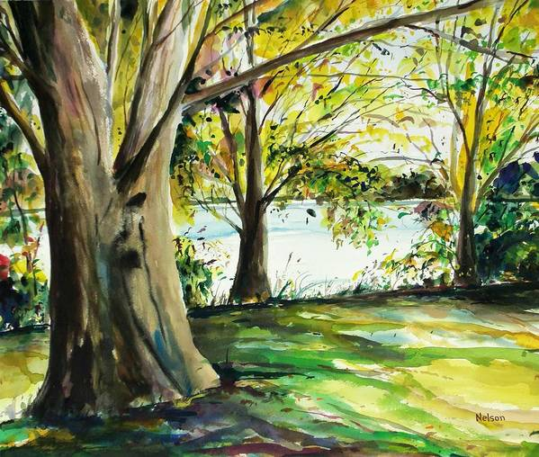 Watercolor Poster featuring the painting Singeltary Shade by Scott Nelson