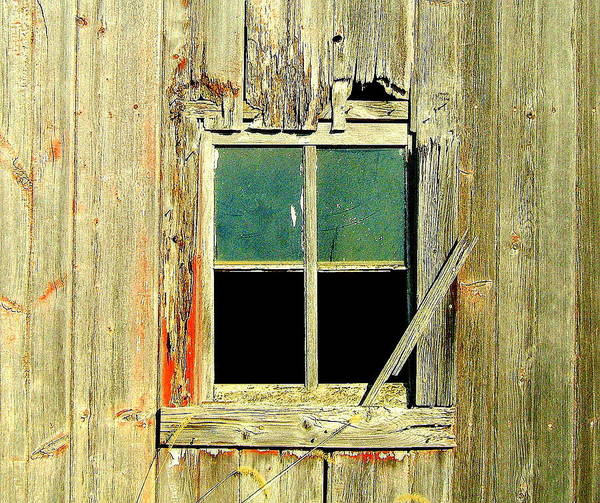 Window Poster featuring the photograph Paneless by Claude Oesterreicher