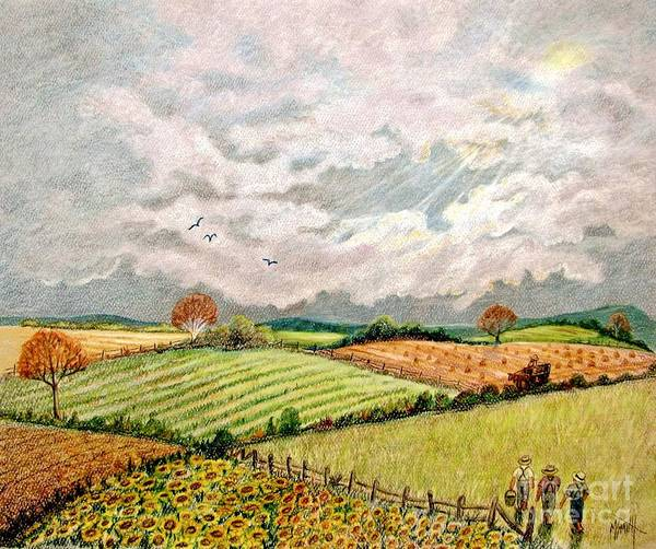 Farm Fields Poster featuring the drawing Summer Harvest by Marilyn Smith