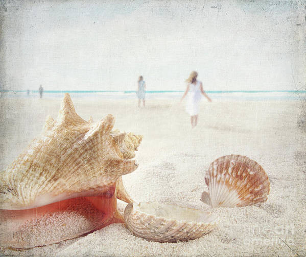 Aquatic Poster featuring the photograph Beach Scene With People Walking And Seashells by Sandra Cunningham