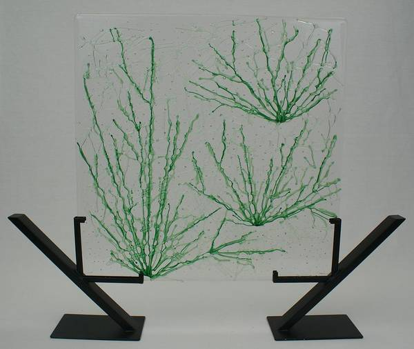 Fused Glass Green pale Green Desert Grass Network standing Art Stand Poster featuring the glass art Desert Grass by Louis Copper