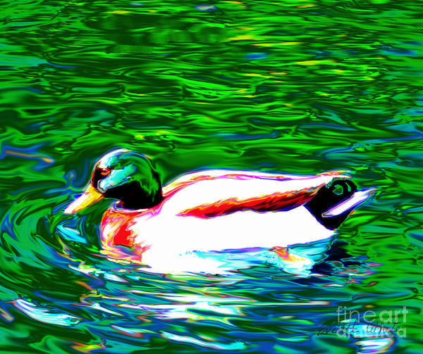 Duck Poster featuring the painting Duck by Everett White