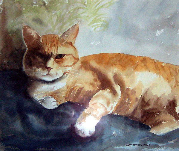 Cat Poster featuring the print Toby The Best Cat Ever by Anne Trotter Hodge