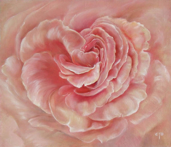 Rose Poster featuring the painting Gentle by Tanya Byrd