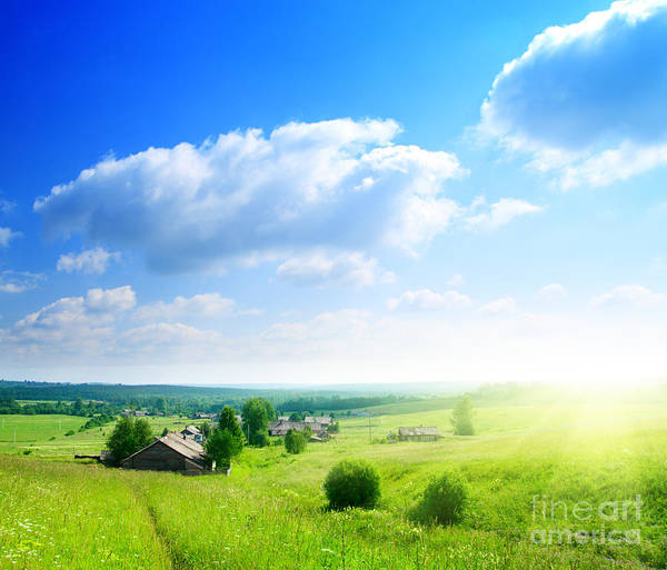 Green Grasses Poster featuring the photograph Green Grasses by Boon Mee