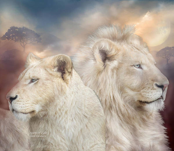 Lion Poster featuring the mixed media Spirits Of Light by Carol Cavalaris