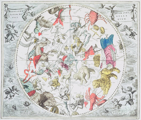 Celestial Planisphere Showing The Signs Of The Zodiac Poster featuring the drawing Celestial Planisphere Showing The Signs Of The Zodiac by Andreas Cellarius