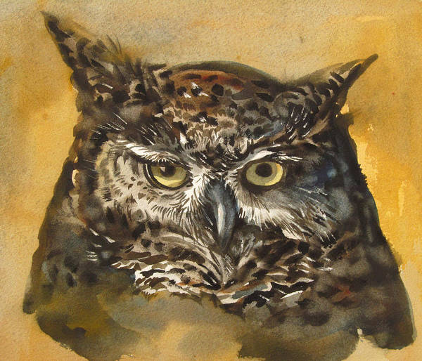 Watercolor Poster featuring the painting Owl Watercolor by Alfred Ng
