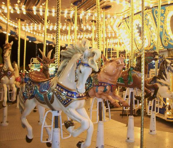 Carosel Horse Poster featuring the photograph Carousel Horse 2 by Anita Burgermeister