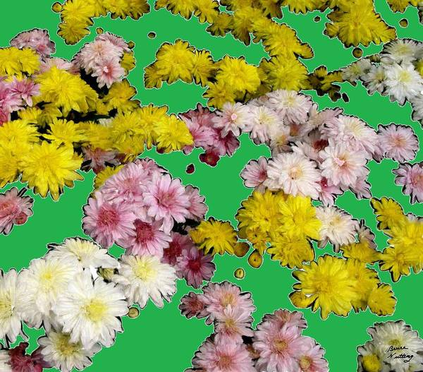Flowers Poster featuring the painting Flowers Everywhere by Bruce Nutting
