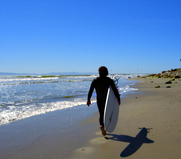 Sea Poster featuring the photograph Beach Boy 1 by Robin Hernandez