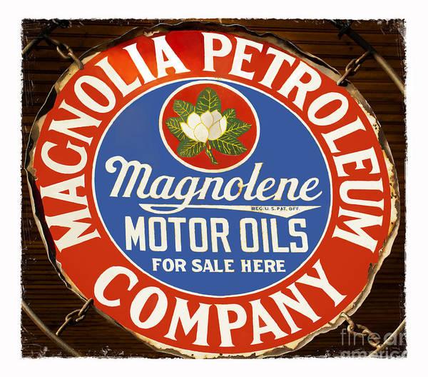 Petroleum Poster featuring the photograph Magnolia by Elena Nosyreva