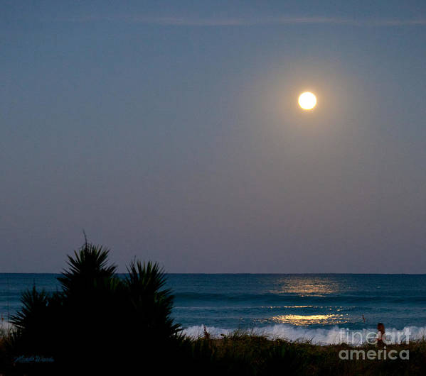 Moonlit Stroll Poster featuring the photograph Moonlit Stroll by Michelle Wiarda