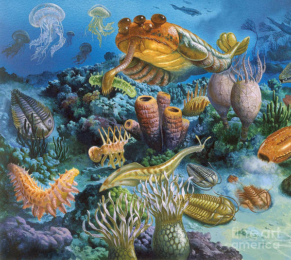 Illustration Poster featuring the photograph Underwater Paleozoic Landscape by Publiphoto