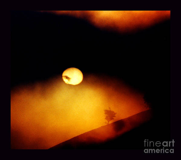 Sun Poster featuring the photograph The End Of Reason by Susanne Still