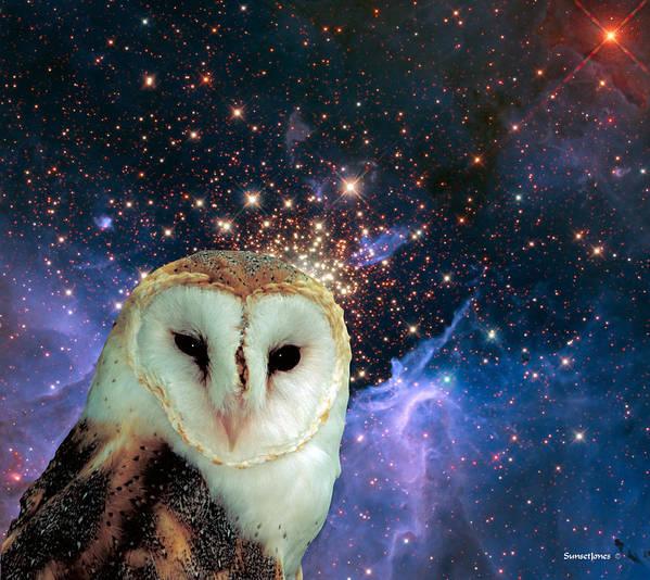 Stars Poster featuring the digital art Celestial Nights by Robert Orinski