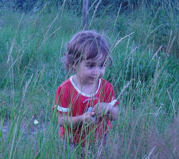 Landscape Poster featuring the photograph Innocense Of A Child by Sharon Stacey