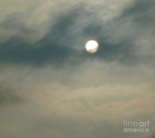 Sun Poster featuring the photograph Rare Moment by Donna McLarty