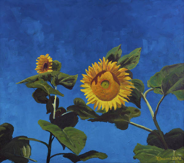 Sun Poster featuring the painting Sunflowers by Marco Busoni