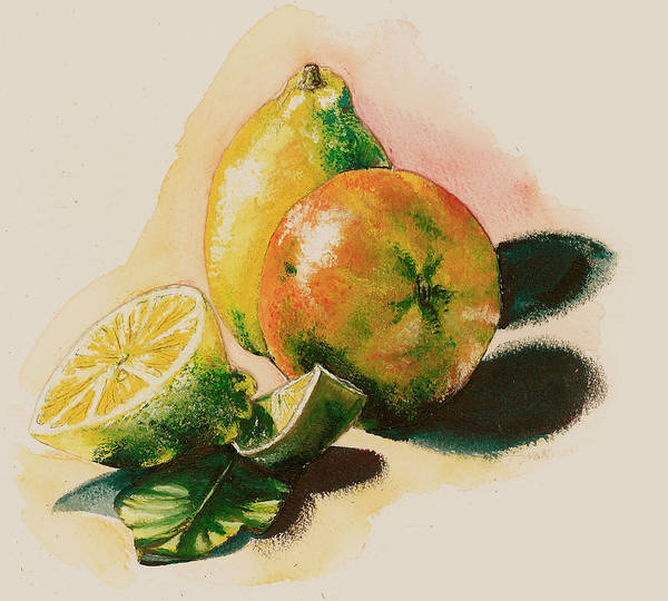 Light Poster featuring the painting Citrus Under The Sun Light by Alessandra Andrisani