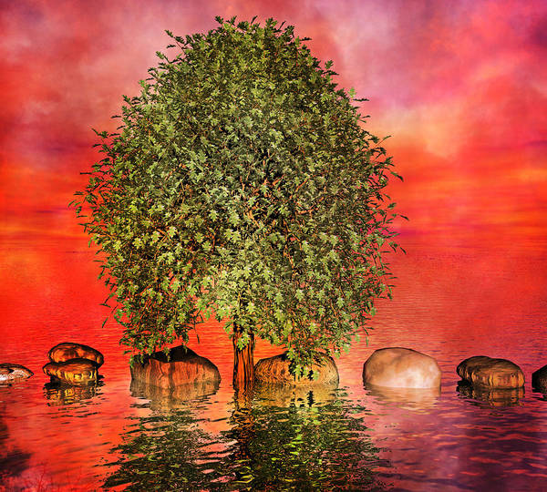 Tree Poster featuring the digital art The Wishing Tree One Of Two by Betsy Knapp