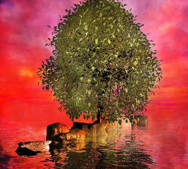Tree Poster featuring the digital art The Wishing Tree Two Of Two by Betsy Knapp