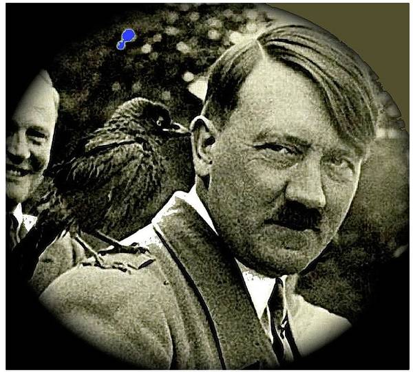 Adolf Hitler And A Feathered Friend C.1941-2008 Poster featuring the photograph Adolf Hitler And A Feathered Friend C.1941-2008 by David Lee Guss