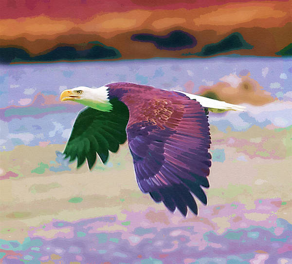 Eagles Poster featuring the painting Eagle In Air by Clarence Alford