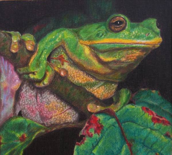 Frog Poster featuring the painting Froggie by Karen Ilari