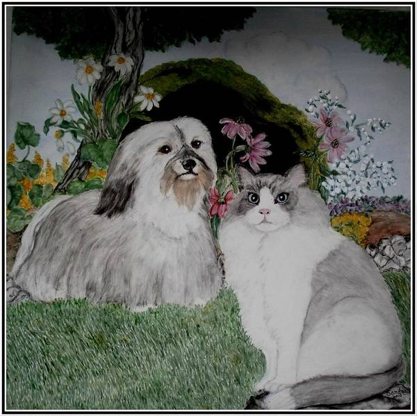 Cat Poster featuring the painting A Cat And A Dog by Sandra Maddox