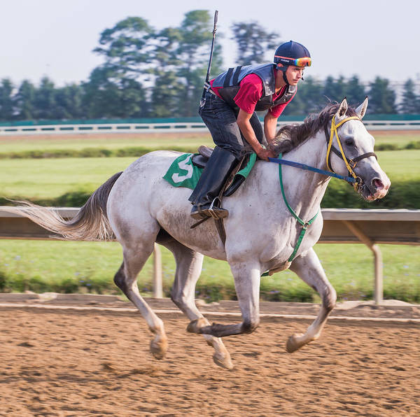 Race Horse Racehorse Thoroughbred Jockey Racetrack Morning Workout Work Out Warm-up Beulah Park Ohio Poster featuring the photograph Carousel Horse 3 by Richard Marquardt