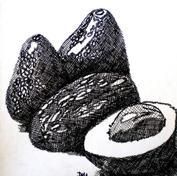 Avocados Poster featuring the painting Crosshatched Avocados by Debi Starr
