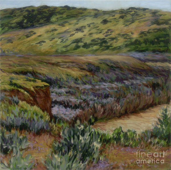 Landscape Poster featuring the painting Cuyama Muddy by Betsee Talavera