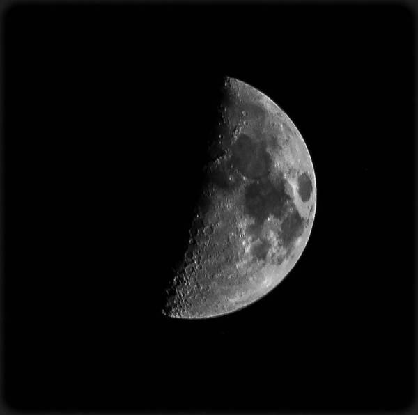 Moon Poster featuring the photograph Half Moon by Angela Hernandez