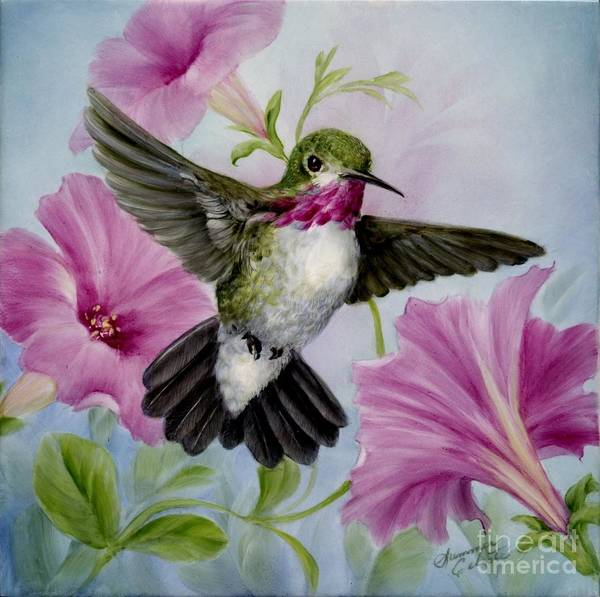 Humming Bird Poster featuring the painting Hummer In Petunias by Summer Celeste