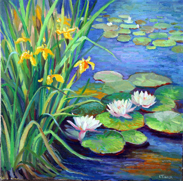 Water Lily Poster featuring the painting Irises And Lilies by Douglas Turner