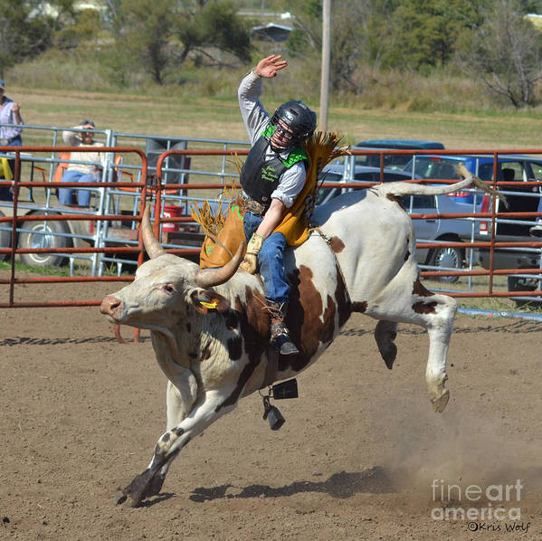 Bullriding Poster featuring the photograph Not His First Rodeo by Kris Wolf