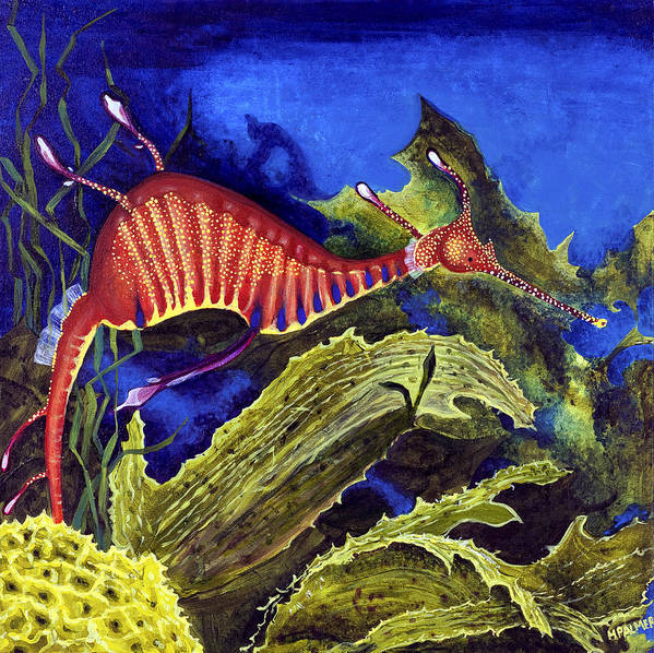 Seadragon Poster featuring the painting Sea Dragon by Mary Palmer