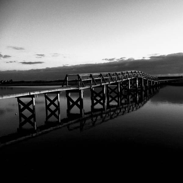 Cape Cod Poster featuring the photograph Symmetry Bw by MPG Artworks
