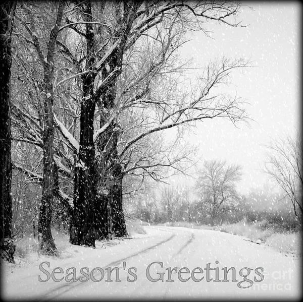 Seasonal Poster featuring the photograph Winter White Season's Greetings by Carol Groenen